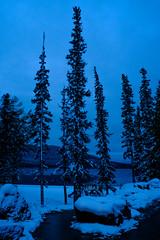 blue hour (patrickgkelly) Tags: trees lake snow morning dark blue cold brrr grandecache alberta canada