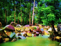 Taman Rekreasi Ulu Bendul Tanjung Ipoh, Negeri Sembilan https://goo.gl/maps/EPjsRDNjFHz #travel #holiday #traveling #trip #Asian #Malaysia #旅行 #度假 #亞洲 #馬來西亞 #วันหยุด #การเดินทาง #ホリデー #휴일 #여행 #праздник #путешествие #大自然 #nature #河 #River #강 #sungai #川 #ре (soonlung81) Tags: trip river سفر วันหยุด vacanza fluss flod malaysia путешествие sungai resa vakantie 휴일 馬來西亞 旅行 reise nature แม่น้ำ semester ulubendul asia 여행 asian voyage 大自然 reizen 度假 traveling 강 río urlaub 川 река ホリデー การเดินทาง holiday праздник fiume rivière rivier عطلة 河 vacances fiesta viaggio 亞洲 viaje travel