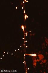20180816-2018-08-16 21.29.10.jpg (palavradavidaportugal) Tags: wordoflifeportugal avalanche localchurchministries palavradavida jogos games altacristã ministérioscomigrejaslocais preaching jovens youth