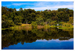 Reflexo (Claudio Arriens) Tags: reflexo lago landscape paisagem unisinos brasil natureza canoneos40d cores riograndedosul canonef1740mmf4lusm