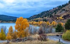 Atherton Creek Camp Ground @ Slide Like (scepdoll) Tags: antelopeflats fall mormonrow rain tetons wyoming aspens autumn barn cloudy cottonwood