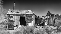 Open House (joeqc) Tags: nevada nv whitepinecounty minerva abandoned forgotten oncewashome black bw blancoynegro blackandwhite white monochrome mono