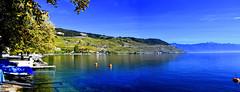 Parce que ça Lavaux bien (Diegojack) Tags: vaud suisse cully bourgenlavaux paysages vignes lavaux panorama assemblage automne d500 nikon nikonpassion groupenuagesetciel fabuleuse