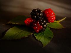 No Smartphone.. (BeMo52) Tags: bfood black blackberries blue brombeeren flora food fruits lumixgmacro30mmf28 macro macromondays makro natur nature red