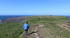 Off she goes again (debstromquist) Tags: family kilkeecliffs cliffs wildatlanticway countyclare ireland