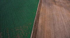 Agriculture Aerial Fields (free3yourmind) Tags: agriculture aerial fields landscape green road belarus above view harvest
