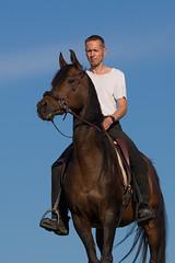 Basim-HK_OS180416 (OliverSeitz) Tags: elbasim wachlarz elda arabian vollblutaraber pferd tier