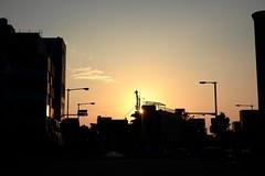 sunrise (ababhastopographer) Tags: 信号 osaka tennouji shitennouji uemachi city sunrise equinox syncretism colud signal 大阪 天王寺 四天王寺 上町台地 夜明け 日の出 黎明 秋分