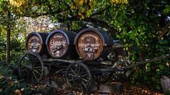 Willkommen zur Weinprobe.jpg (Knipser31405) Tags: 2018 pfalz weinberge herbst stmartin