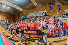 _FPV3235 (américodias) Tags: viana365 benfica sporting voleibol fpv