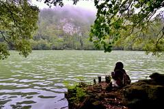Segredo - Secret (Gato M) Tags: azores portugal sao miguel lagoa congro volcan niebla caldera caldeira bosque lago laguna
