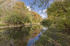 _IMG8106 CR (Pete.L .Hawkins Photography) Tags: autumnal walk sheffield tinsley 28th oct 2018 towpath canal blue skies autumn colours pentax k1 hd pentaxd fa 1530mm f28 ed sdm wr