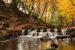 Tollymore_Stepping_Stones_October_2018 (ryan.c.dallas) Tags: autumn tollymore forest river stepping stones trees ireland northern down waterfall canon 70d eos efs 1022mm 1022 landscape water