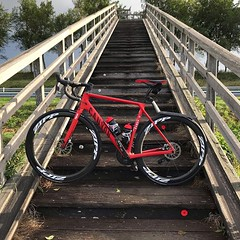 Not easy to navigate this bridge on cycling shoes.. #wetwood #slippery #steep #AlpecinCycling #BicyclingNL #MyCanyon #ZippWheels