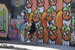 #miami#streetart#graff#graffiti#streetphoto#streetphotography#art#rue#paint#streetphtographer#usa#winwood# (seb.f1) Tags: miami streetart graff graffiti streetphoto streetphotography art rue paint streetphtographer usa winwood