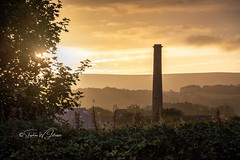 SJ1_1925 - Skyline...sunrise...Burnley (SWJuk) Tags: swjuk uk unitedkingdom gb britain england lancashire burnley home canal leedsliverpoolcanal towpath skyline chimney hills hillside trees sunrise dawn daybreak sun sunlight horizon 2018 sep2018 autumn colourful golden clouds foliage nikon d7200 nikond7200 18300mm rawnef lightroomclassiccc