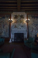 Fireplace (rschnaible) Tags: biltmore house estate mansion home building architecture asheville north carolina the south history historic interior fireplace low light