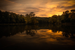 Büdingen September 2018 (janeway1973) Tags: büdingen hessen deutschland thiergartenweiher forest wald trees bäume lake see teich weiher pond early morning früh morgens sunrise sonnenaufgang sky himmel scenery landscape landschaft
