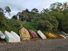 Boats in a Line (jascyani) Tags: akaroa bankspeninsula newzealand takamatua boats