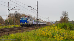 EP07-1020 (Adam Okuń) Tags: ep07 poland trains tlk