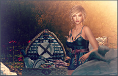 FabFree:  A Day Trip In Denim (Love Trill) Tags: truth catwa glamaffair sissboom avaway lwposes whimberly belleza
