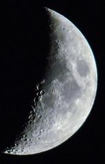 _DSC7786 (barriere herve) Tags: blue heron lac marsan moon