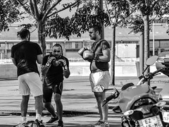 Street Boxing, Marseille (bobbex) Tags: france french lemidi lesud men male boxing sparring shade sport streetphotography streetscene streetlife marseille provence blackandwhite blackwhite bw monochrome mono