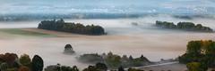 Behind the mist (ZeGaby) Tags: brumes clouds landscape nature naturephotography paysage paysagedechampagne pentaxda300mm pentaxk1 aÿchampagne marne france fr