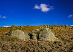 Rocks and trees, Winyards Nick, Peak District, UK (SheffieldRambler) Tags: peakdistrict higgertor millstoneedge