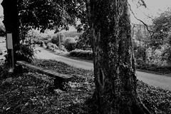 On attendait le camion de l'épicier... (woltarise) Tags: france iphone7 streetwise ardèche hameau route banc entrée attente souvenirs nostalgie émotions