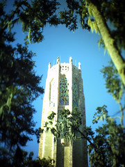 Bok Tower through the trees (fullcirclepiece) Tags: oak bok tower tilt shift carillon singing sight seeing attraction lake wales florida