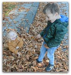 YEAH IT IS AUTUMN !! (Maarten Kleijkamp) Tags: fun cheerful grandchildren play autumn plezier vrolijk kleinkinderen herfst spelen puck boaz bladeren leaves lach smile happy adorable broerenzus brotherandsister