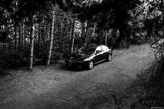 Black snake (@Dpalichorov) Tags: black snake car vechicle sport sportcar alfa romeo 159 alfaromeo alfaromeo159 tuning beauty beautiful shot tree forest outdoor road monochrome blackandwhite bw bandw blackwhite nikond3200 nikon d3200 culture low key lowkey bulgaria italia italian wood