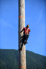 Pole Climbing Race (Anthony Mark Images) Tags: sky mountain woodenpole canadianlumberjack poleclimbing ponytail blondehair lumberjack safetyboots dickiejeans spikedfootharness safetystrapandrope climbing climbingstraightup skilled canadianplaidshirt orangesuspenders greatlumberjackshow ketchikan alaska usa 49thstate entertainment competion race portrait people male nikon d850
