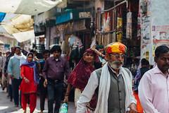 Holi Pilgrimage, Uttar Pradesh India (AdamCohn) Tags: adam cohn uttar pradesh india mathura vrindavan holi pilgrim pilgrimage pilgrimmage pilgrims streetphotographer streetphotography wwwadamcohncom adamcohn uttarpradesh isapurbanger