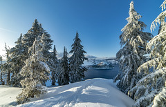 Crater Lake and Wizard Island (acase1968) Tags: crater lake winter snow wizard island oregon nikon d750 rokinon 14mm f28 ultrawide angle ultra wide trees tracks