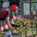 Ironman Edinburgh 2018_02869
