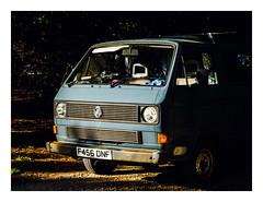 VW (fishyfish_arcade) Tags: 1442mm gx7 lumix panasoniclumixgvario1442mmhd yorkshiresculpturepark campercan volkswagon