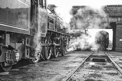 Transition (photofitzp) Tags: 78019 bw blackandwhite class45 d123 gcr loughborough railways riddles standardclass tranistion
