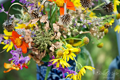 Last flush of Autumn... (glasskunstler) Tags: flowersautumn color seeds seedheadsmaximilian salvia garlic hydrangea bouquet mexicansunflowers bokeh daisies vitex vase art garden landscape