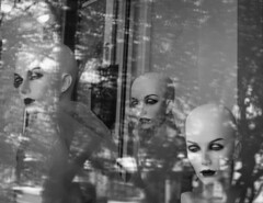 Inanimate Indifference (Greg Adams Photography) Tags: mannequin window store bald women blackandwhite bw colorblind jenkintown pa pennsylvania shop reflections trees urban hhsc2000 2018 three 3 ladies plastic