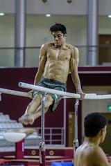 ginastica_doha_21out2018_treinomasc_abelardomendesjr-37 (Ministerio do Esporte) Tags: doha mundialdeginásticaartística qatar ginásticaartística