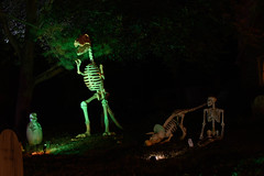 Halloween 2018 (michael_orr25) Tags: nikond7500 halloween decorations