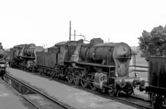FS Gr 741.401 + Gr 741 DL Verona 15/05/1969. Foto Roberto Trionfini (stefano.trionfini) Tags: treni train bahn zug steam dampf fs gr741 verona italia italy