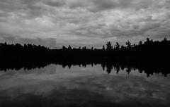 Algonquin Park on Kodak Tri-X. (IV2K) Tags: minolta x570 minoltax570 film 35mmfilm dusk rodinol blazinol blackandwhite bw kodak kodakfilm trix kodaktrix algonquin algonquinpark skyline ontario ontarioparks