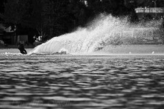 There's a Boat in there Somewhere (LongInt57) Tags: water lake waterski skiing skier sport watersport recreation fun spray plume boat man person people men bw monochrome black white grey gray kelowna bc canada okanagan ducklake ellisonlake board athlete speed fast action motion