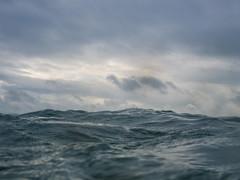 Grey morning swim (lomokev) Tags: file:name=180813omdem58130159 grey olympusomdem5 olympus omd em5 olympusomd wildswimming clouds wave sea