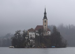 The island of lake Bled (Steve P Gardner) Tags: lakebled slovenia water beautiful nature outdoors peaceful upper carniolan julian alps bled island gothic frescos rich baroque assumption mary boats rowing mountains picturesque vista