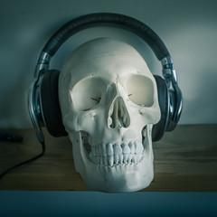 skull headphones (Vincent Négrerie) Tags: ricoh gr still life crane casque