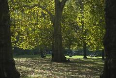 Autumn people (dwimagesolutions) Tags: england london stjamespark autumn indiansummer nikond200 zoomnikkor1870mmf3545